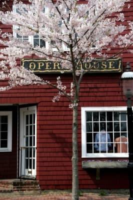Opera-House-Spring-w426.jpg