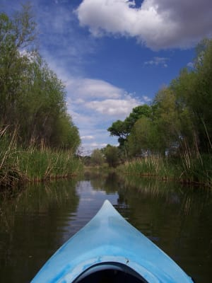 Kayaking_2.jpg