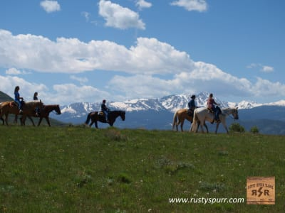 Home-Page-Slider-HORSE.jpg