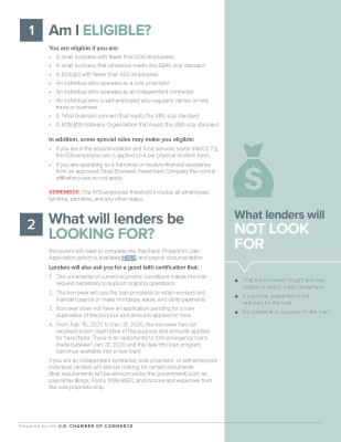 2020-04-01---Small-Business-PPP-Loan-Guide_Page_2.jpg