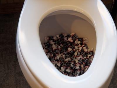 Toilet-Tootsies.JPG