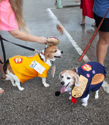 Bob-Barker_Dog-Costume.jpg