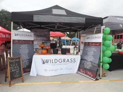 Wildgrass.JPG