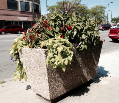 Rectangular_Planter.jpg