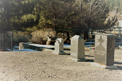 Genoa-graveyard.jpg
