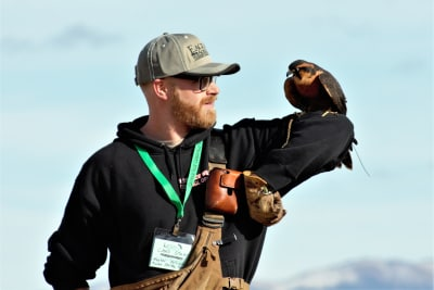 falcon-and-falconer.jpg