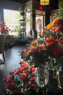 Andrew's_Garden_Shop_Flowers.jpg