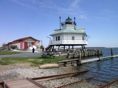 CBMM-Lighthouse-w1296.jpg