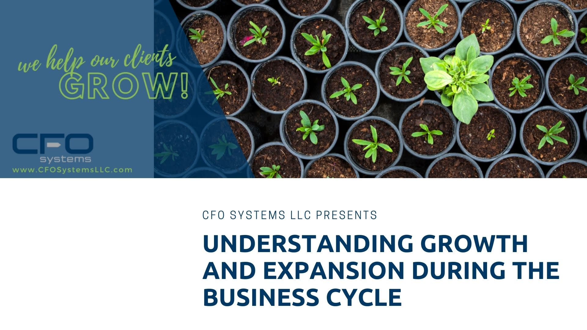 Understanding Growth and Expansion During The Business Life Cycle