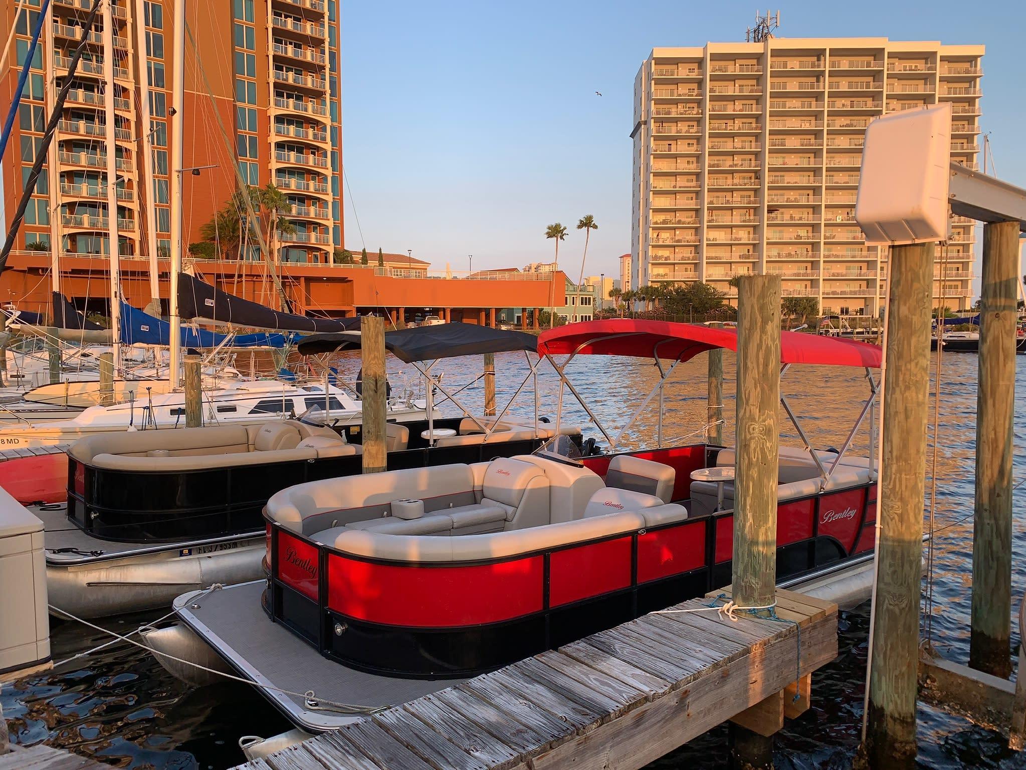 Pensacola Beach Dolphin Tours, Pontoons & More!