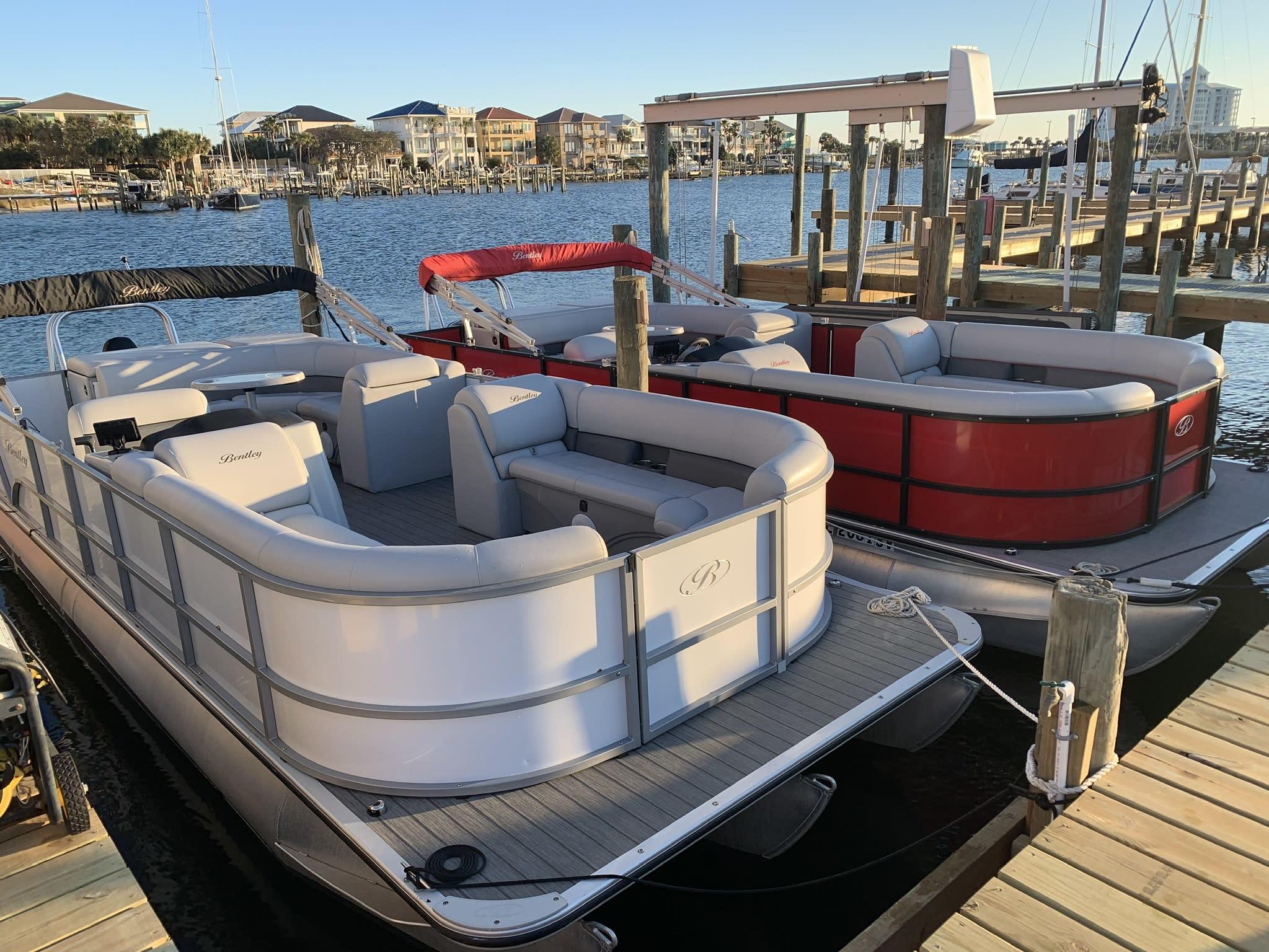 Pensacola Beach Dolphin Tours, Pontoons & More! We
