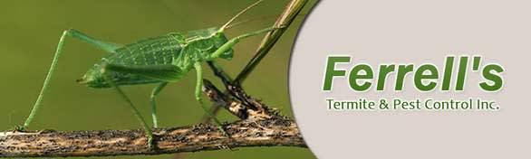 Ferrell's Termite & Pest Control