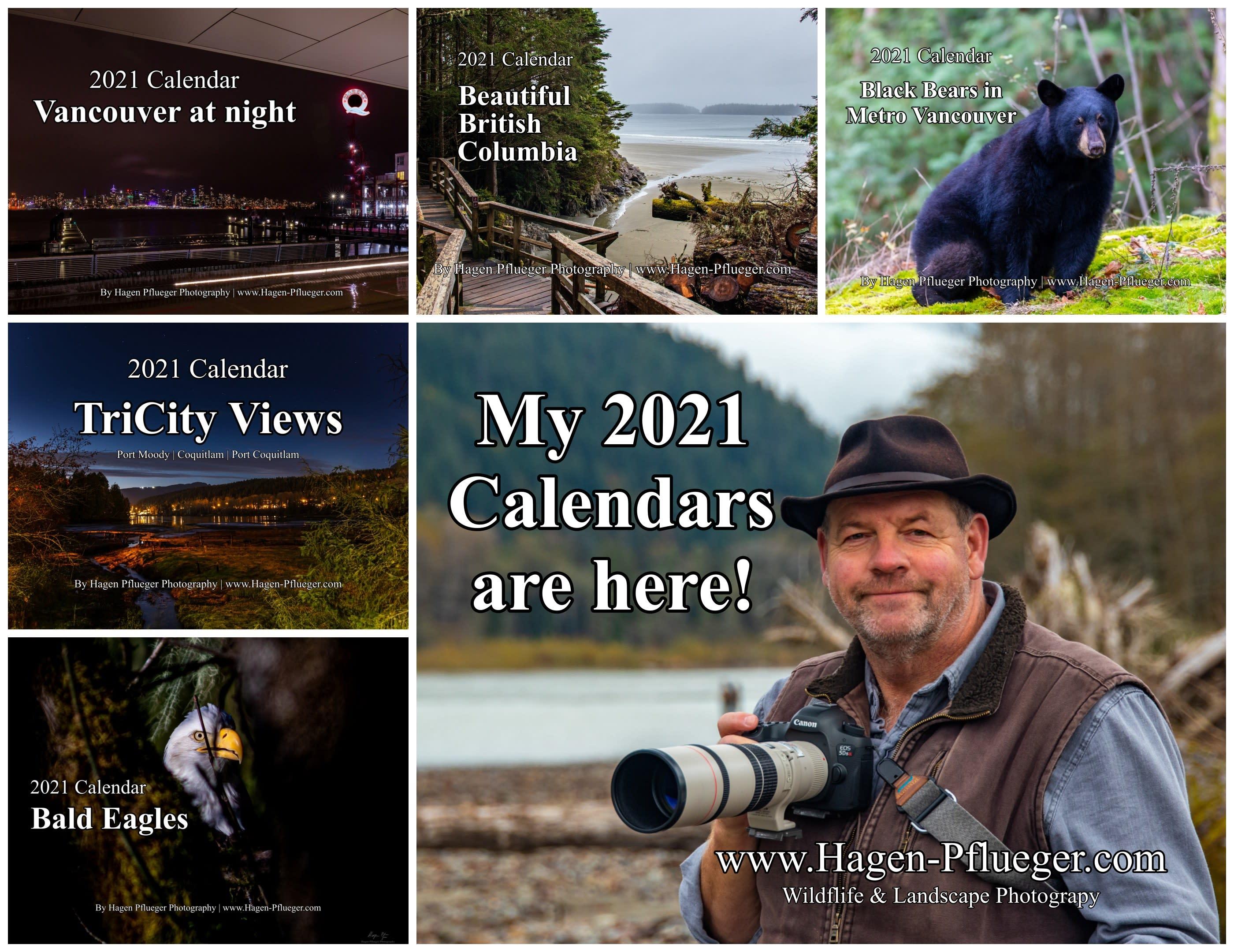 Calendar promotion