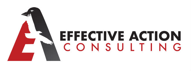 Effective Action Consulting logo