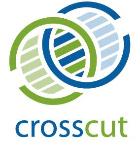 CrossCut Partners