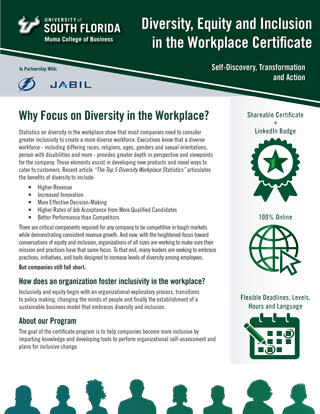 USF, Diversity, Equity, Inclusion, Workplace, Tampa Bay Lightning, Jabil, Tampa Bay LGBT Chamber