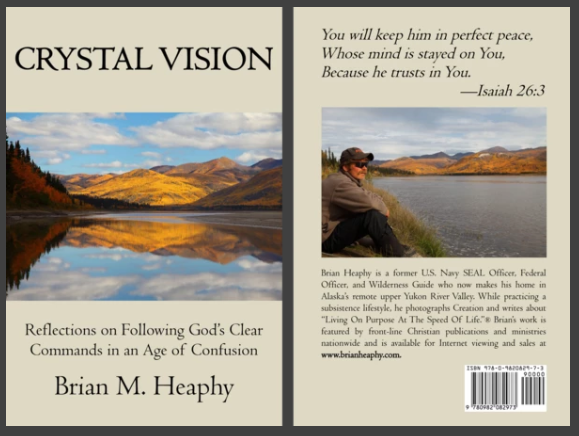 Crystal Vision [Book]