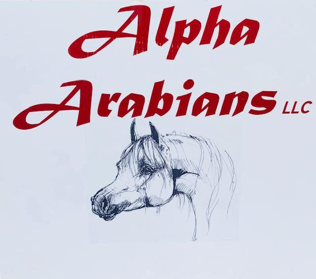 Alpha Arabians LLC