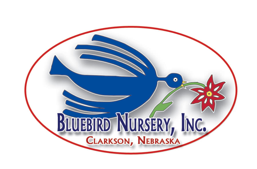 Bluebird Nursery, Inc.