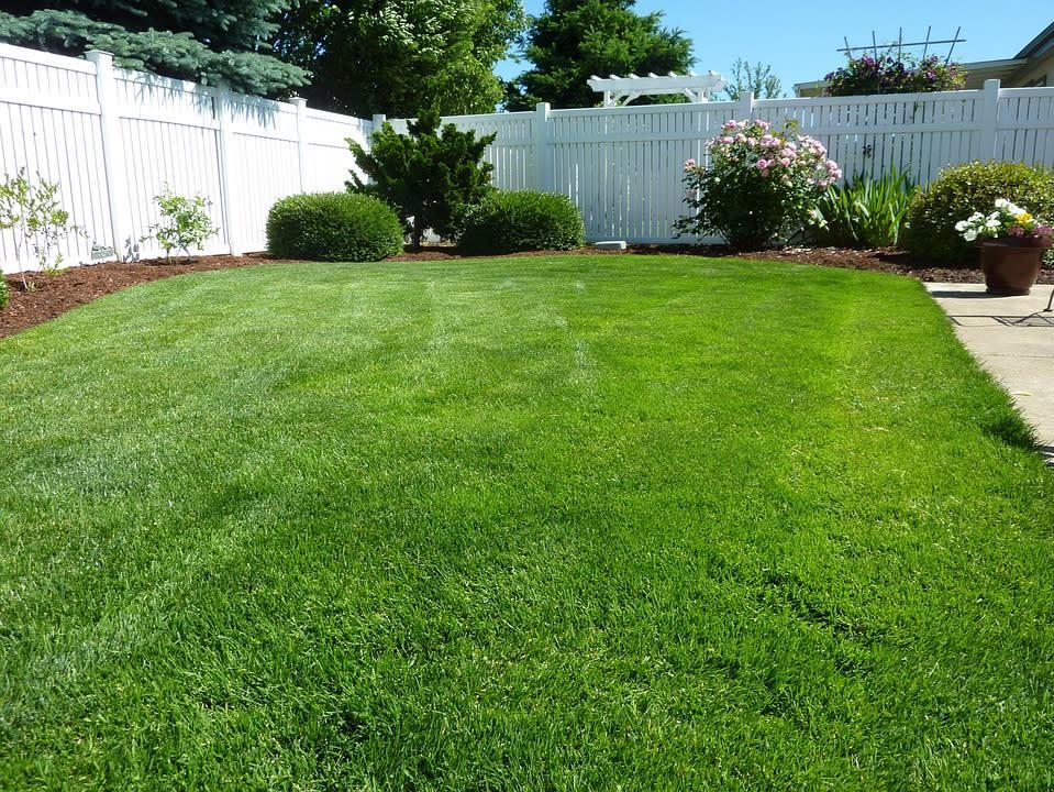 Baskfield Lawn Service