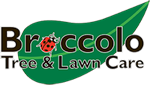 Broccolo Tree & Lawn Care, Inc.