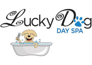 Lucky Dog Day Spa