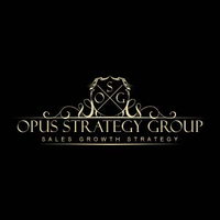 Opus Strategy Group