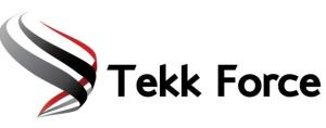 TEKK FORCE