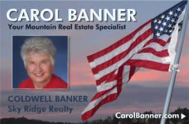 Coldwell Banker Sky Ridge Realty-Carol Banner