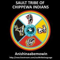 Sault Ste. Marie Tribe of Chippewa Indians, Michigan