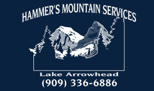 Hammer's Mountain Services Inc.