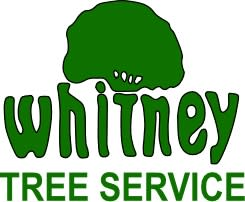 Whitney Tree Service