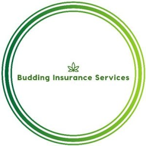 Budding Insurance Services