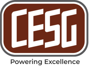 CESG (CRITICAL ELECTRIC SYSTEMS GROUP, LLC)