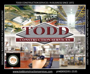 Todd Construction Services