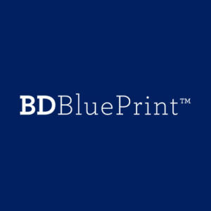 Blueprint Growth Consulting