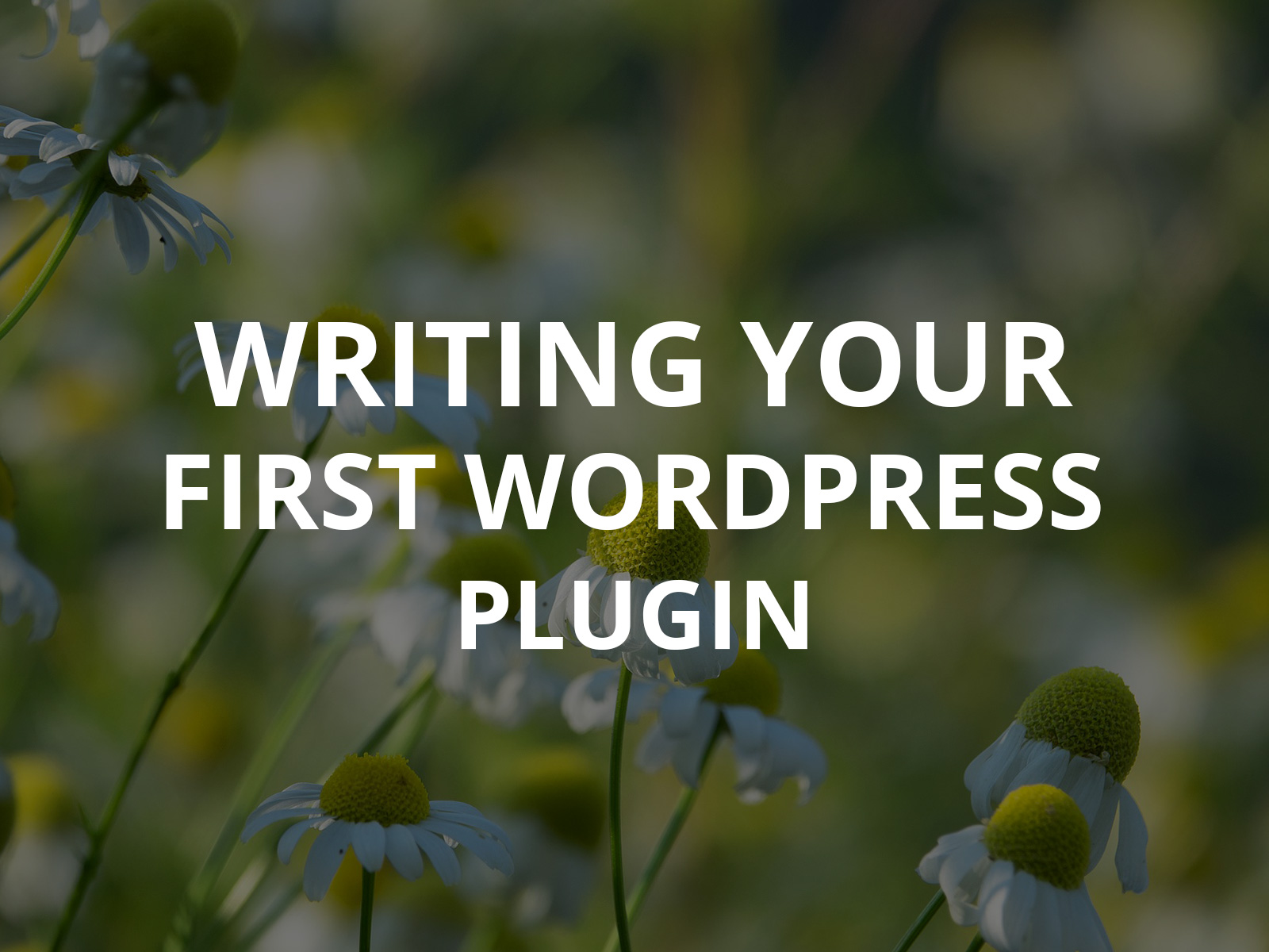 How to Go About Writing Your First WordPress Plugin