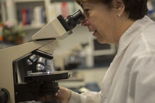 Common Lab Tests Provided at Middlesex Health // Middlesex Health