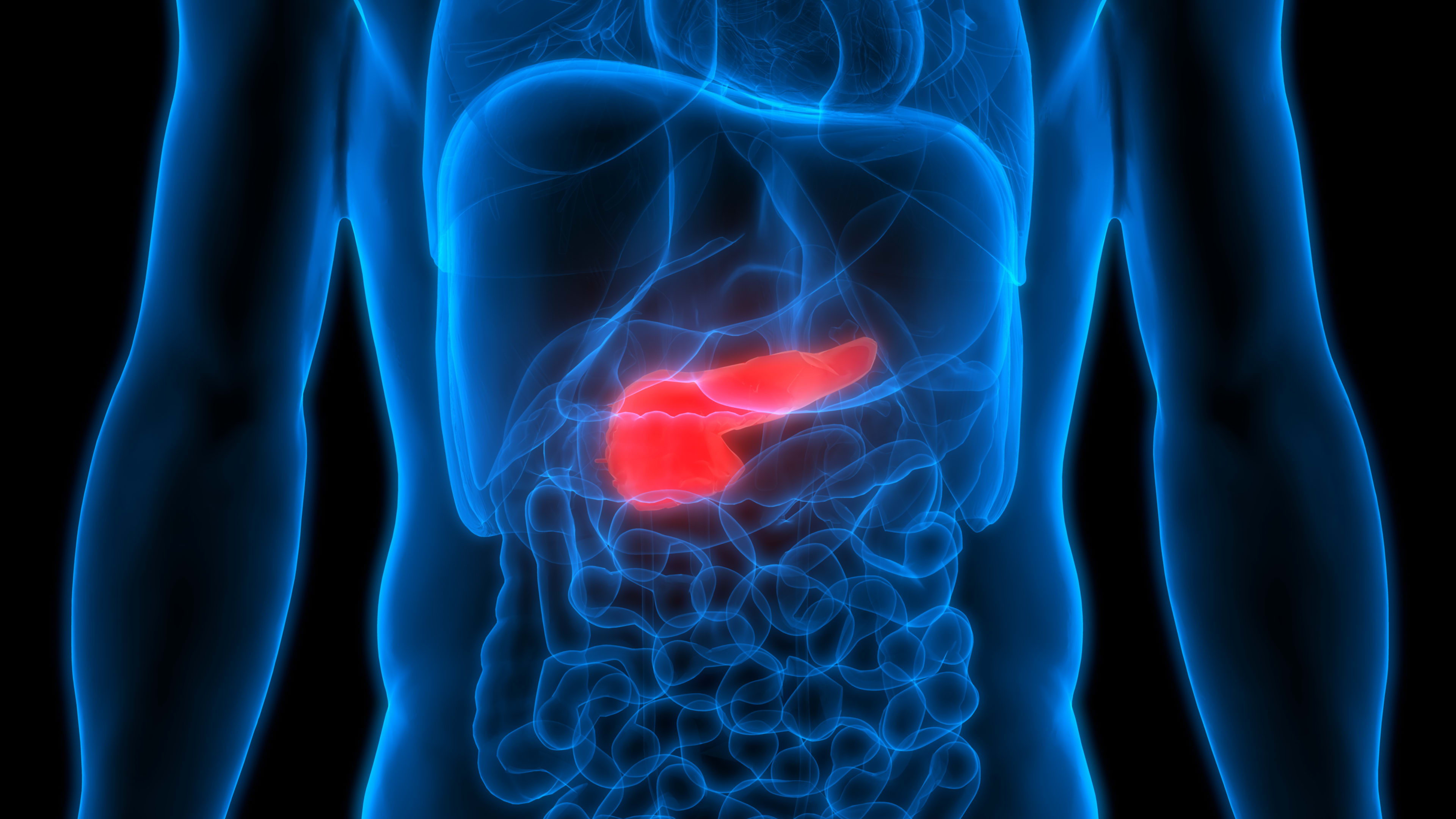 The pancreas is located in the abdomen.