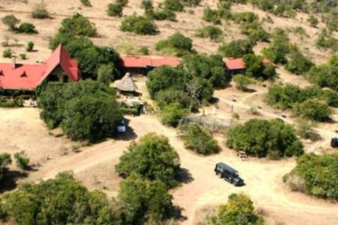 Kenia Safari Aberdare Nationalpark
