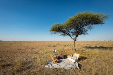 Kalahari Plains Camp