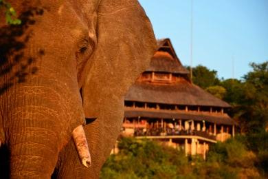 Victoria Falls Safari Lodge- Siduli Hide