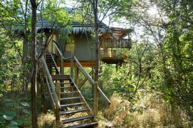 Treetop Chalet