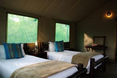 Safari tent beds