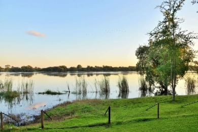 View of the Chobe River