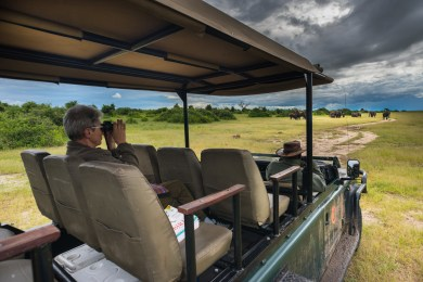 Game Drive on the Western Area