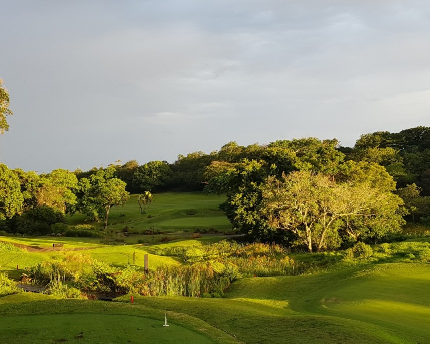 Selborne 6th Tee.jpg