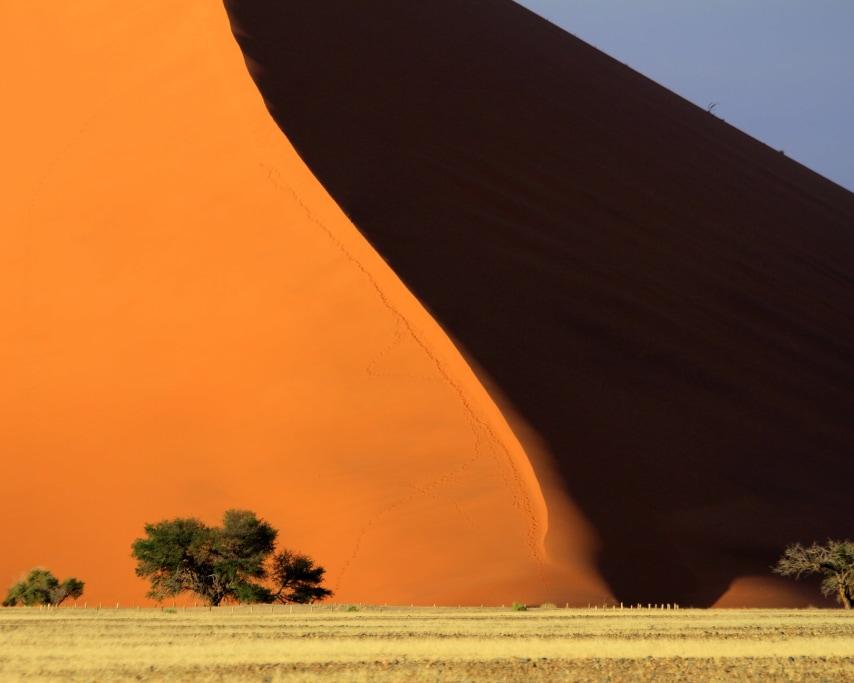 desert-3145087_1920.jpg