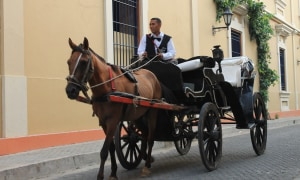 Kutsche-Cartagena.JPG