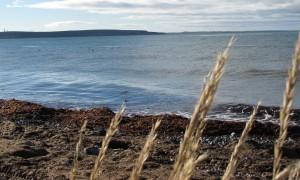 Punta-Arenas-Meer.JPG
